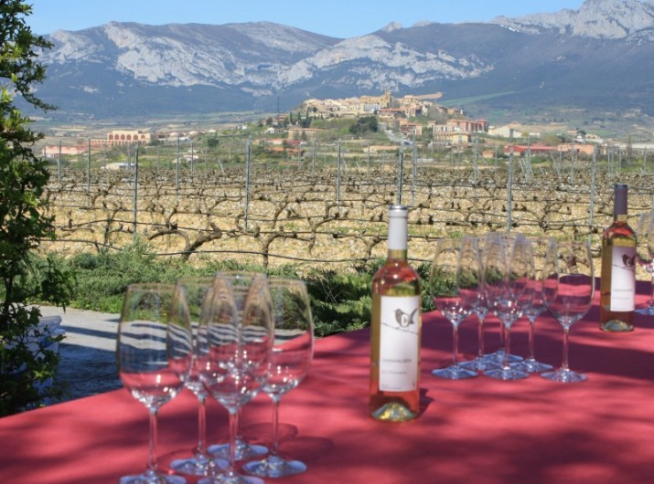 wine-tasting-la-rioja