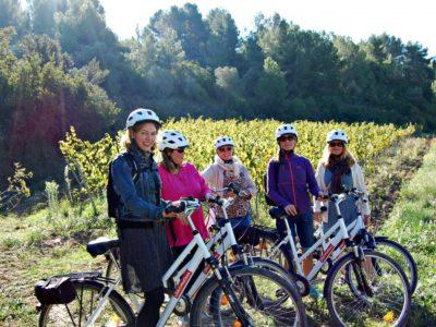 sykkeltur blandt vinranker
