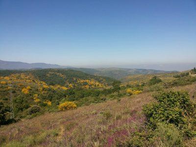 landscape-st-james-way