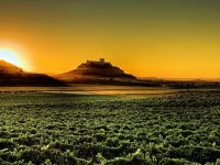 private-food-wine-tour-ribera-duero-26
