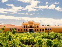 private-food-wine-tour-ribera-duero-8